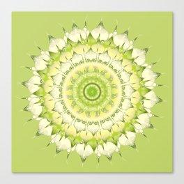 Delicate Mandala green Canvas Print