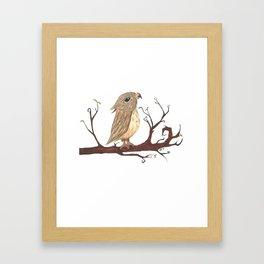 Curious Owl Framed Art Print