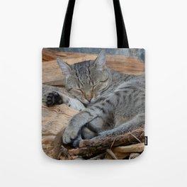 Cats-Pipo Tote Bag