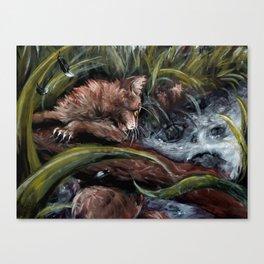 Stormpaw's Slip Canvas Print