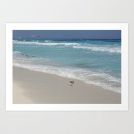 Carribean sea 8 Art Print