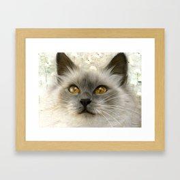 """Cute Kitty (Love cats)"" Framed Art Print"