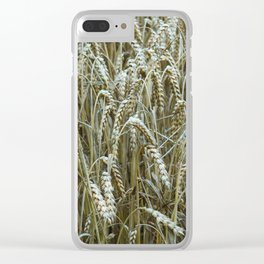 Summer Wheat Field Clear iPhone Case