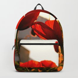 Poppies at Sunset  Backpack