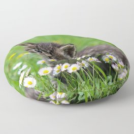 Kitty looking at flowers Floor Pillow