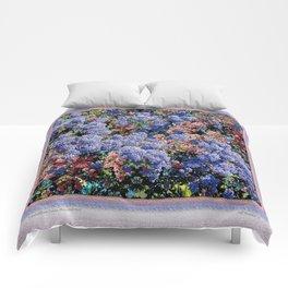 CEANOTHUS JULIA PHELPS ABSTRACT Comforters