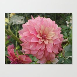 Flor de Alhambra  Canvas Print