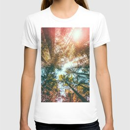California Redwoods Sun-rays and Sky T-shirt