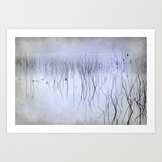 Cormorants in the fog Art Print
