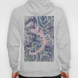 Sweet Succulents 2 Hoody