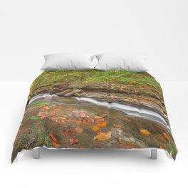 Ricketts Glen Autumn Stream Comforters