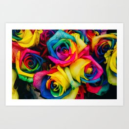 Blossom In Colours Art Print