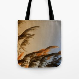 Sunset in autumn. Pampa grass Tote Bag