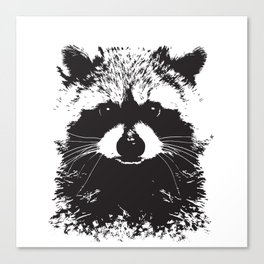 Trash Panda Canvas Print