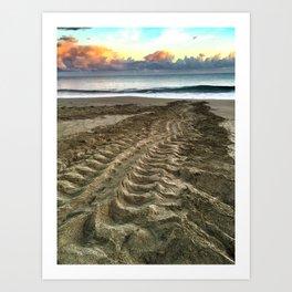 Leatherback Turtle Tracks Art Print