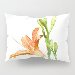 daylily on white Pillow Sham