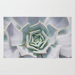 Succulant Photograph, cactus Wall Art Rug