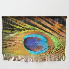 Peacock Feather, Photography Art Print Wall Hanging