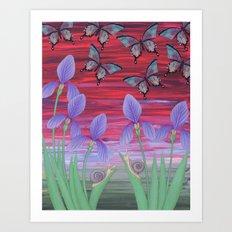 red sky iris garden Art Print