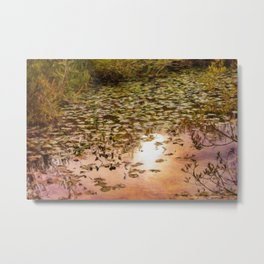 Sunset Glow Against Pond And Lily pads Summer Metal Print