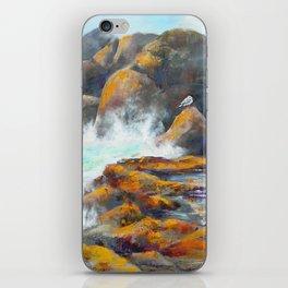 Rocky Edge iPhone Skin