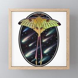 Comet moth Framed Mini Art Print