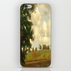 Country Roadside iPhone & iPod Skin