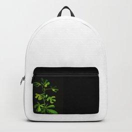 Fig Backpack