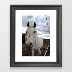 Up Close and Personal with Jenah Framed Art Print