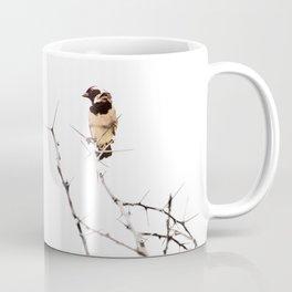 Artistic Minimal Cape Sparrow on Tree Branch Coffee Mug