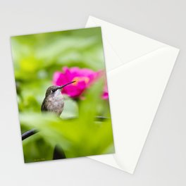Hummingbird IX Stationery Cards
