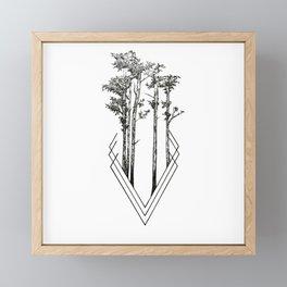Daily Forest Framed Mini Art Print