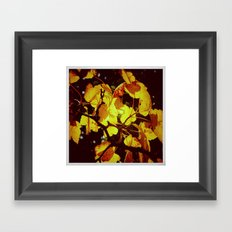 Autumnal#6 Framed Art Print