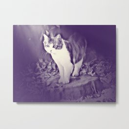 Podium (cat) by GEN Z Metal Print