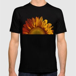 A Sunflower T-shirt
