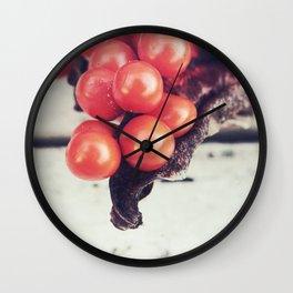 Seed Pods I Wall Clock