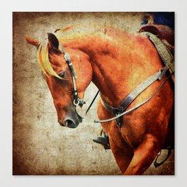 Sorrel Western Horse Canvas Print