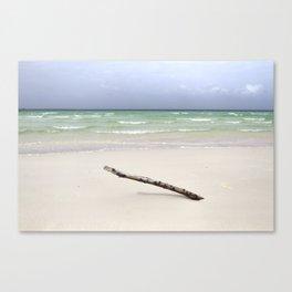 ---\--- Canvas Print