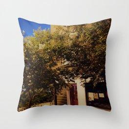 Savanah Street Throw Pillow