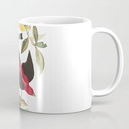 Louisiana Taneger and Scarlet Taneger - Vintage Illustration Coffee Mug
