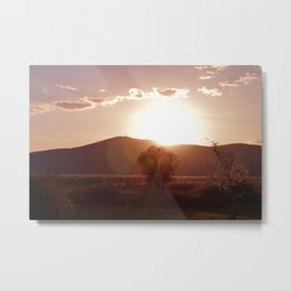 sunset in the meadow Metal Print