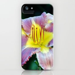 Lavender And Yellow Lily iPhone Case
