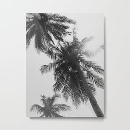 black and white palm trees Metal Print