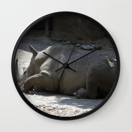 Philadelphia Zoo Series 27 Wall Clock