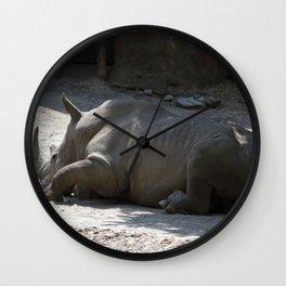 Philadelphia Zoo Series 27 Wall Clock