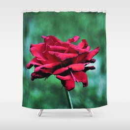 Withered Beauty (ROSE) Shower Curtain