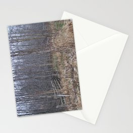 Fenced-in and Neglected Stationery Cards