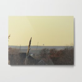 in the still of autumn Metal Print