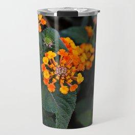 primrose flowers Travel Mug