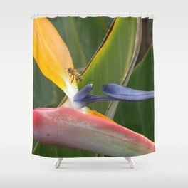 Exiting Paradise Shower Curtain